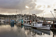 Morning glow over the fishing boats in Newport, Oregon. - 81939818