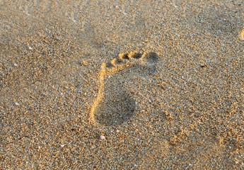 Foot step on beach sand