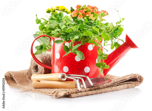 Deurstickers Beijing Spring flowers green leaves in watering can garden tools.