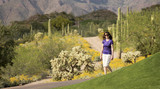 A Woman Walking in the Sonoran Desert poster