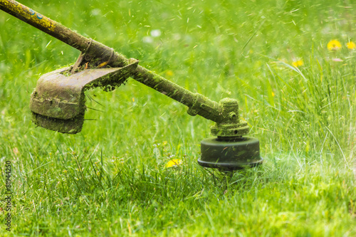 trimmer head cutting grass to small pieces - 81944250