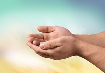 Human Hand. Open hand ( isolated )