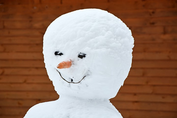 Portrait of the Funny snowman with carrot