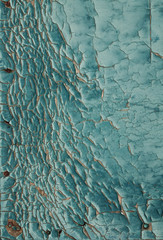 Turquoise colored dry cracked paint on a wall