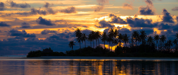 Sunset at the seaside, dark silhouettes of palm trees and
