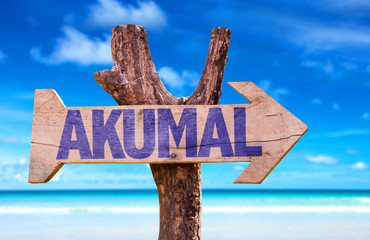Akumal wooden sign with beach background