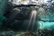 Beams of Light and Mangrove Underwater