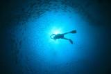 Scuba diver silhouette backlit