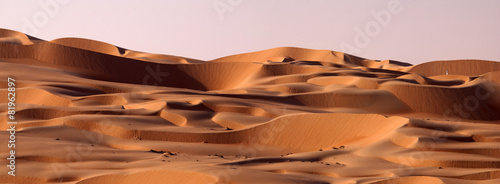 Tuinposter Zandwoestijn Abu Dhabi dune's desert