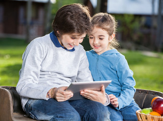 Siblings Using Tablet Computer At Campsite