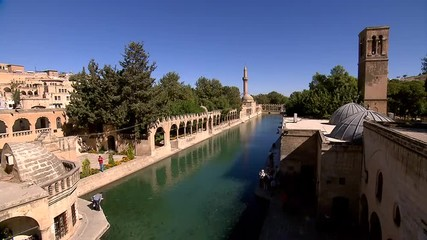 Holy fish lake and Halil-ur Rahman Mosque in Şanlıurfa