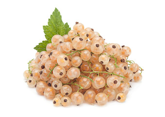 White currant with leaf
