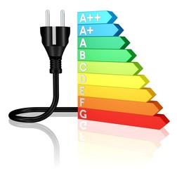 Energie und Effizienz, Energieausweis