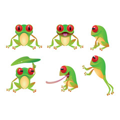 Collection of frog