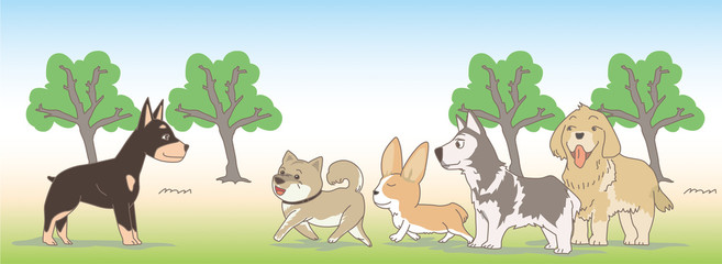 May Dogs