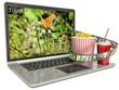4k screen laptop computer with modern ultra hd resolution