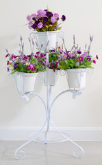 Violet flower in white four flower pots at stand for decoration.
