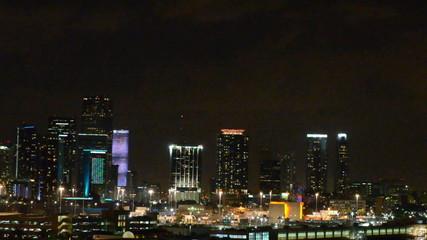 skyline at night in Miami Florida