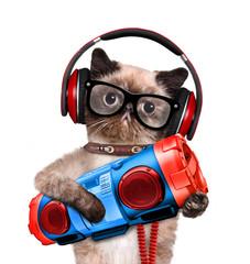 Cat headphones with tape recorder.