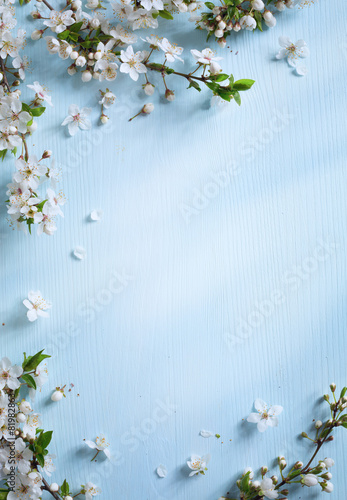 art Spring border background with white blossom