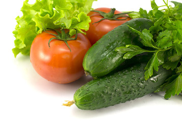 tomatoes, cucumbers and greens on a white background