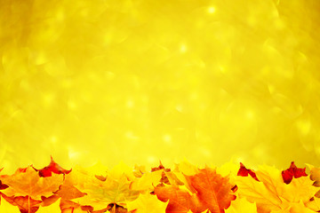 Autumn leaves on a gold background