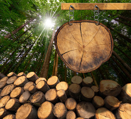Wooden Logs with Forest and Sign