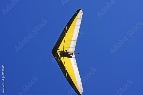 Hang Glider - 81993023