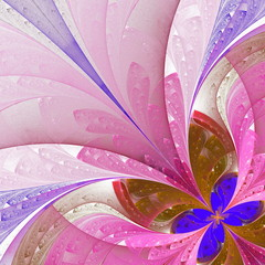 Beautiful fractal flower in blue and pink. Computer generated gr