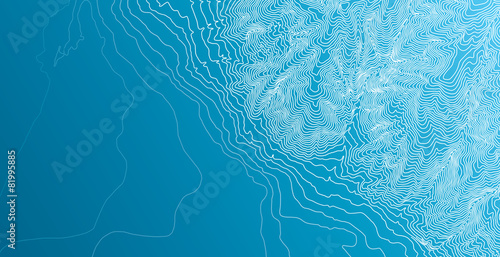 Topographic map background concept - 81995885