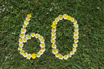 Numeral 60 of blossoms in gras