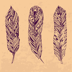 Three hand drawn feathers