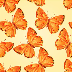 Seamless texture butterfly Lycaena virgaureae vector