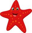 cute starfish cartoon - 82008201
