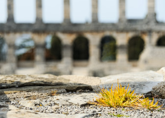 Amphitheater in Pula Detail