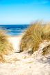 Leinwandbild Motiv Dune at the Baltic Sea, North of Germany