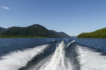 Wake from boat on Lake Teletskoye, Altai, Russia and Pine Trees