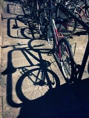 Bicycles shadows.
