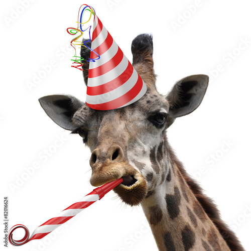 Funny giraffe party animal making a silly face - 82016624