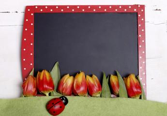 tafel - tulpen