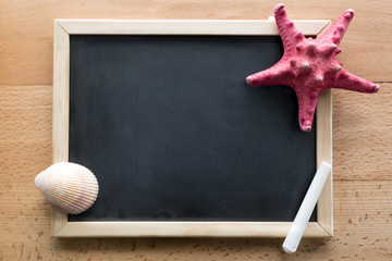 Closeup of seashells and starfish lying on blank blackboard