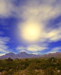 Sonora Desert Sun