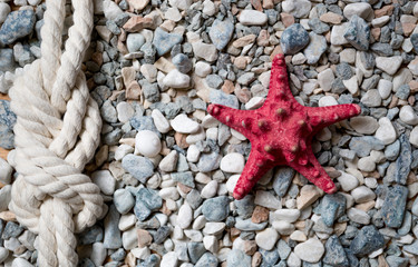 Closeup of red starfish and marine knot lying on colorful pebble