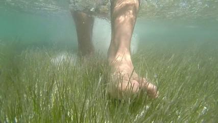 Closeup bare feet walking on shallow grassy sea floor