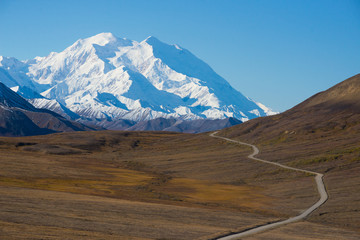 Mount McKinley's snowy peak with the park road in the foreground