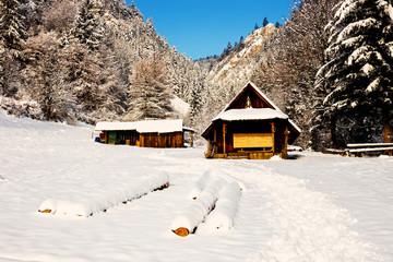 Wooden house in the mountains, Pieniny Mountains, Poland