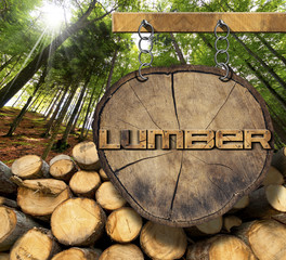 Wooden Logs with Forest and Lumber Sign