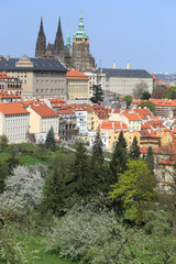 View on the spring Prague gothic Castle, Czech Republic
