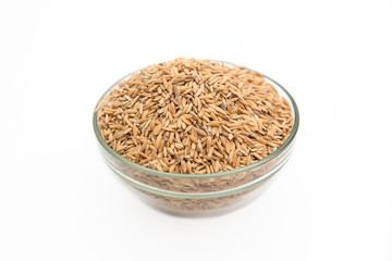 paddy rice in bowl on white background