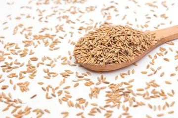 paddy rice on wood ladle